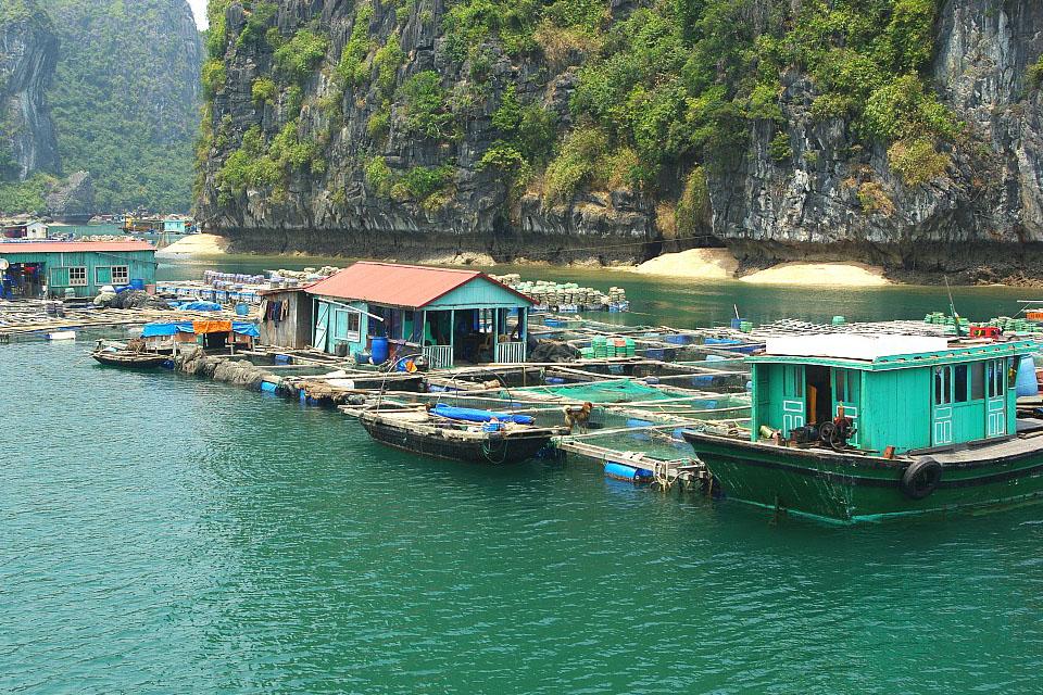 halong-cat-ba-island -3-days-2-nights-4