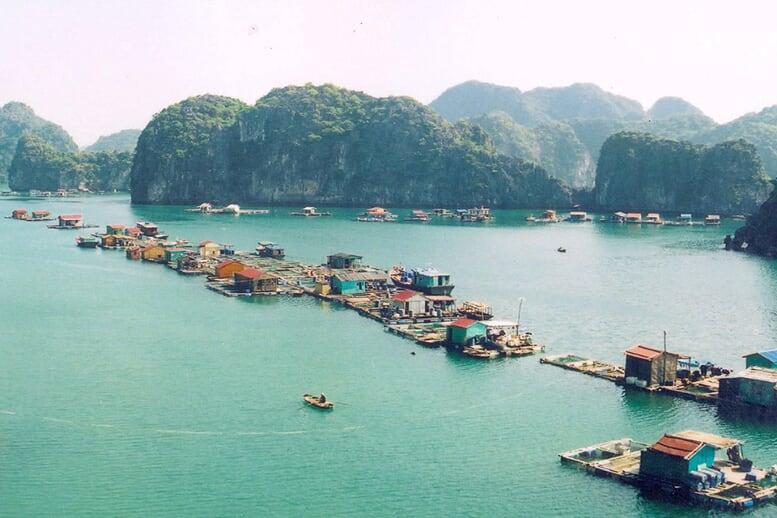 cua-van-floating-village-valentine-premium-cruise-3-days-2-nights