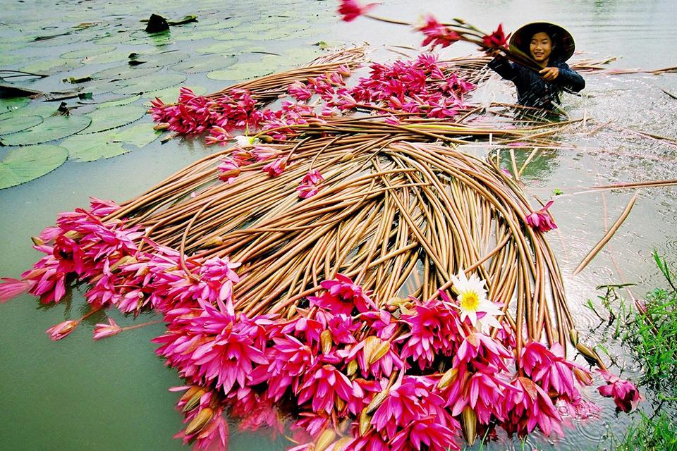 960-mekong-daily-life