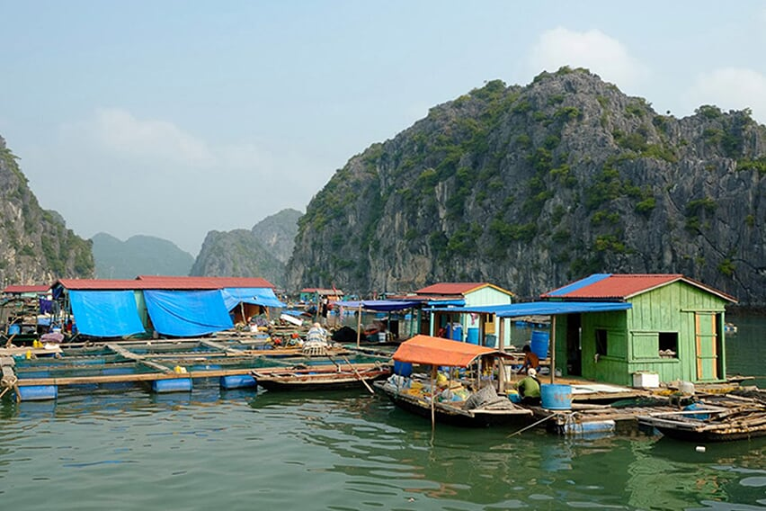 vung-vieng-village-petit-white-dolphin-private-cruise-2-days-1-night