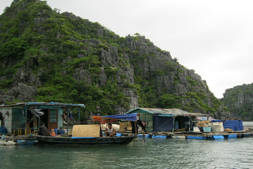 ba-hang-fishing-village-private-boat-trip-from-halong-1