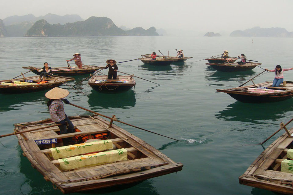 bamboo-boat-halong-full-day-group-1