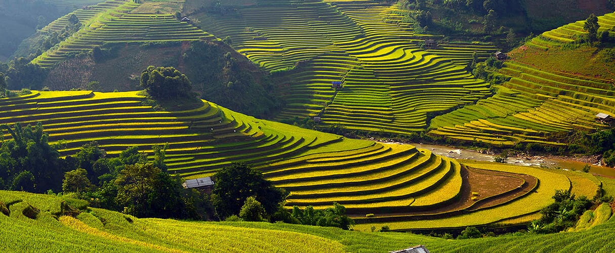 Sapa Medium Trek 3D4N (hotel stay) by train