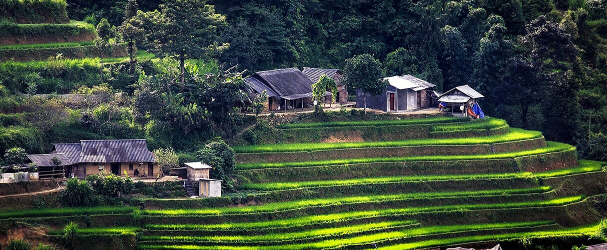 Sapa Moderate Trek with Homestay 3D4N by train