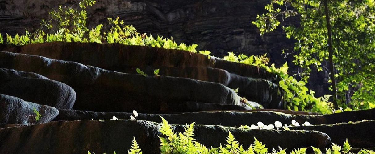 Wild Tu Lan Cave System Explorer 3 days