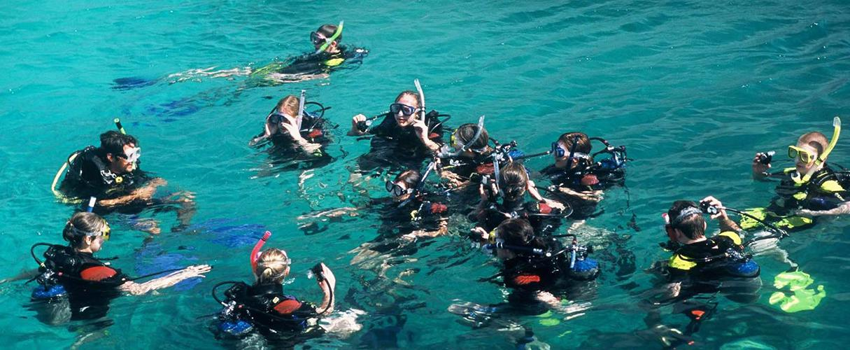 Nha Trang islands and snorkeling tour full day