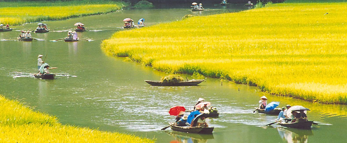 Hoa Lu - Tam Coc full day group tour