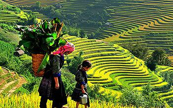 Sapa Easy Trek 2D3N (homestay) by train