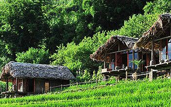 Sapa Trekking and Market tour 3D4N by train