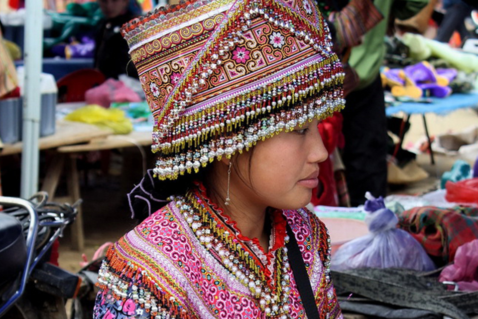 960-bac-ha-flower-hmong-people
