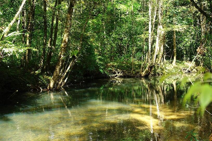 bidoup-national-park