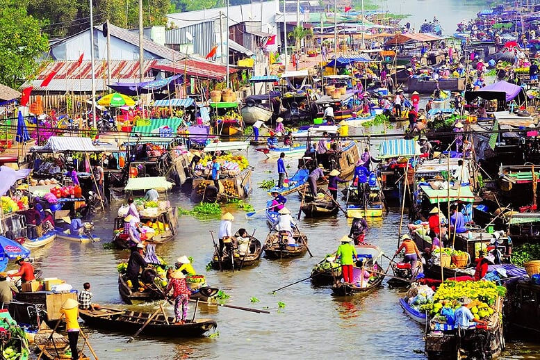cai-rang-floating-market-gecko-eyes-cruise-saigon-phnom-penh-3-days-4