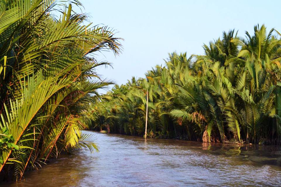 960-coconut-along-mekong-delta