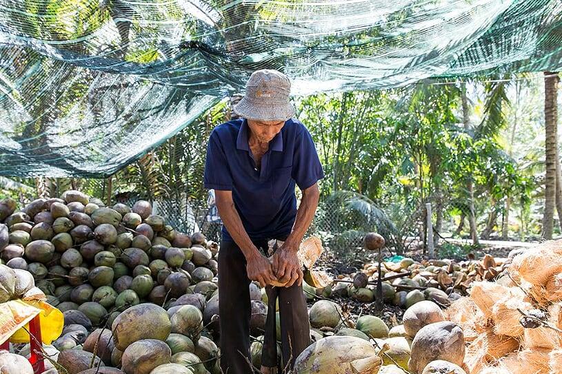 coconut-processing-workshop