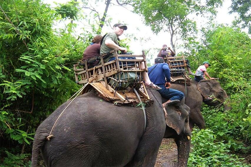 thailand-laos-discovery-23-days-elephant-chiang-rai-2