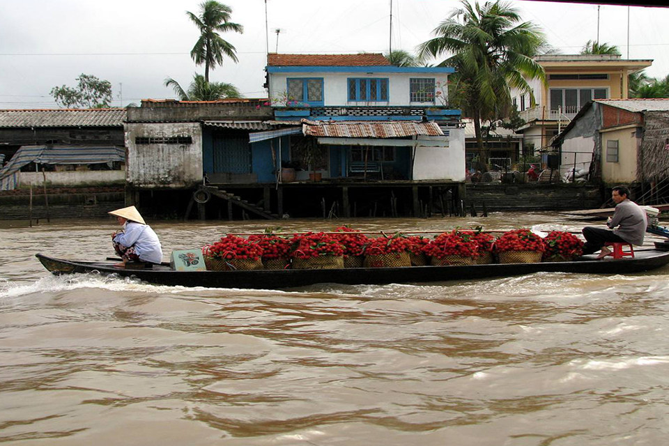 fruit-boat-on-mekong-river-private-3-day-mekong-delta-tour-5