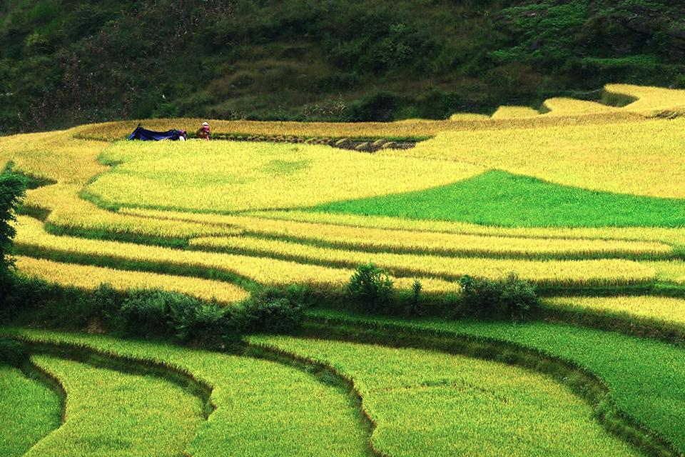 explore-ha-giang-sapa-7-days-3