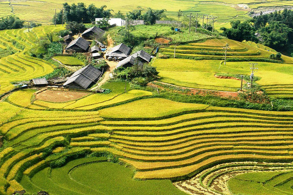 960-lao-chai-ta-van