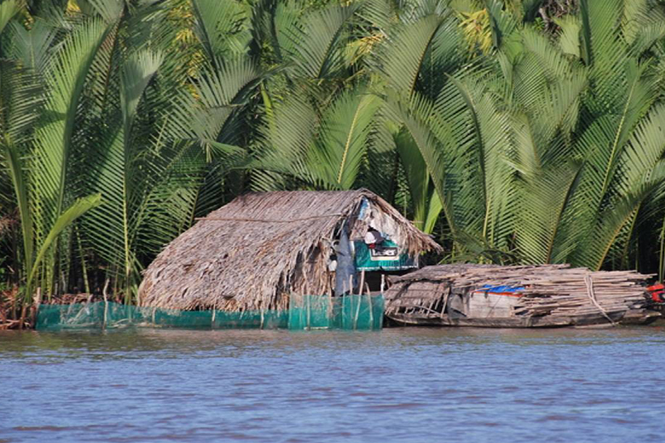 mekong-delta-tour-full-day-2