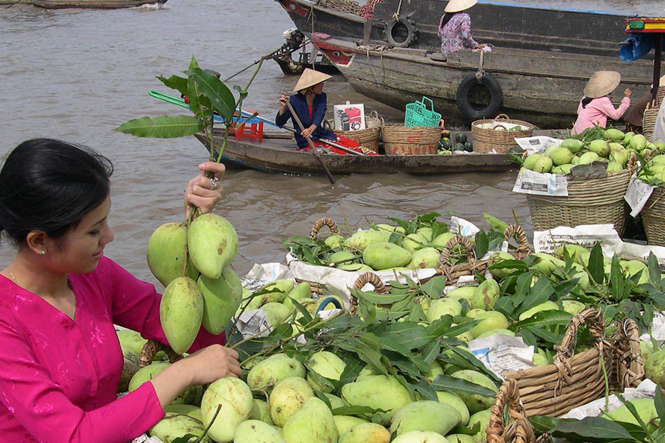 my-tho-ben-tre-private-day-trip-3