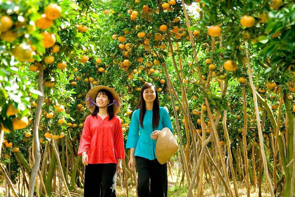 ben-tre-orchard-garden-my-tho-ben-tre-private-day-trip-1