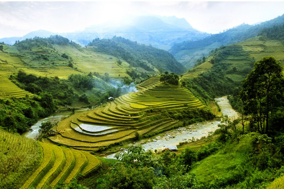 960-rice-paddy-valley