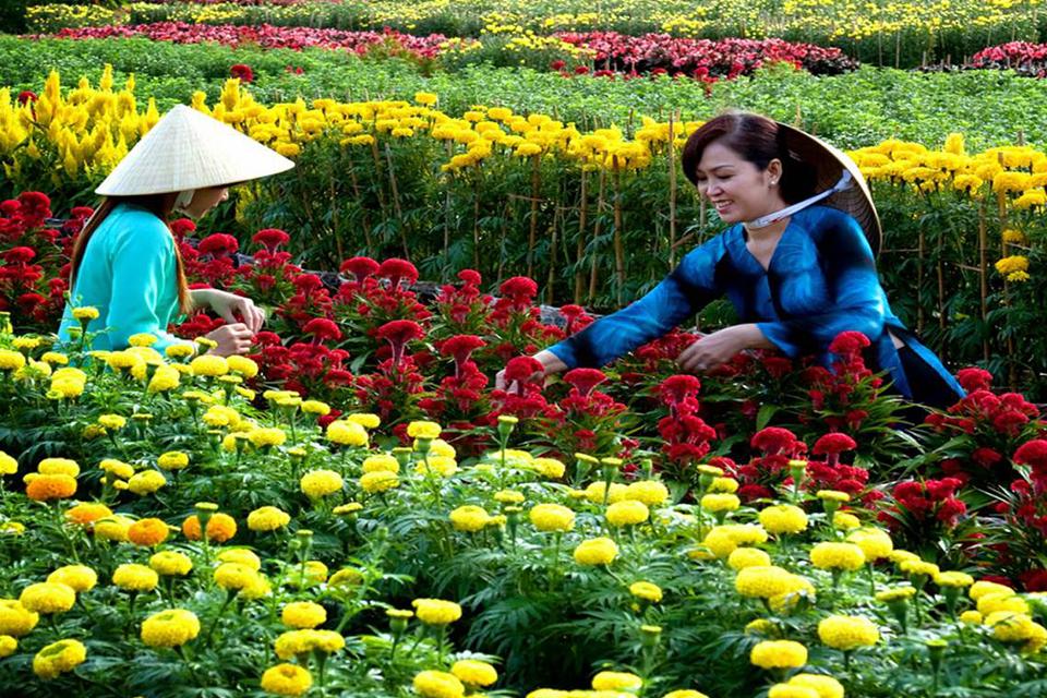 sa-dec-flower-garden-mekong