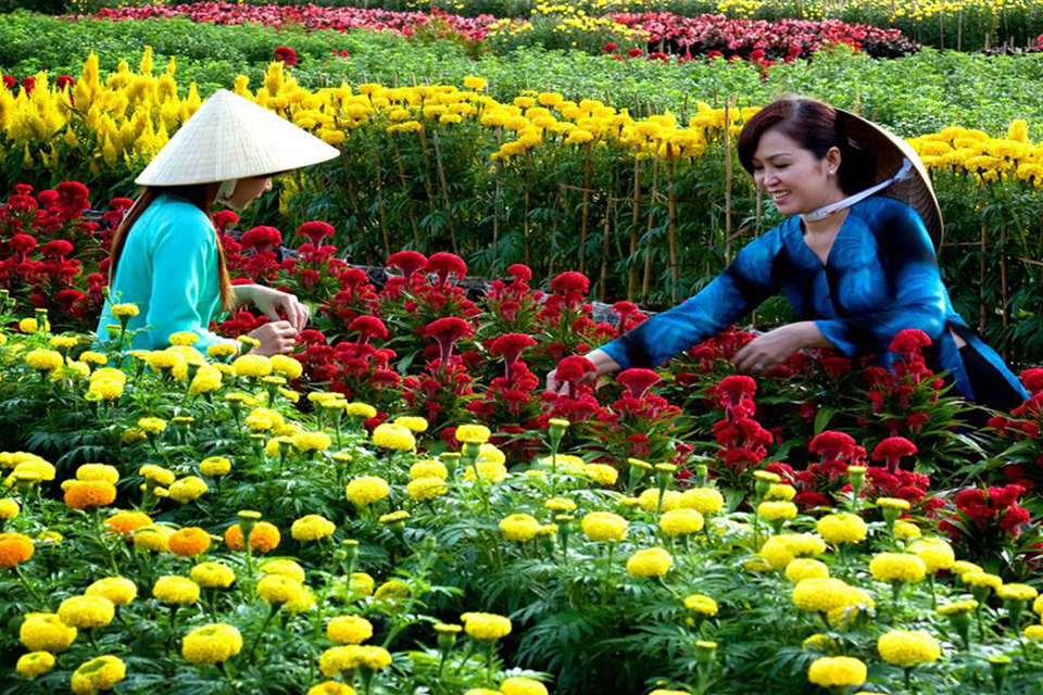 960-sa-dec-flower-garden