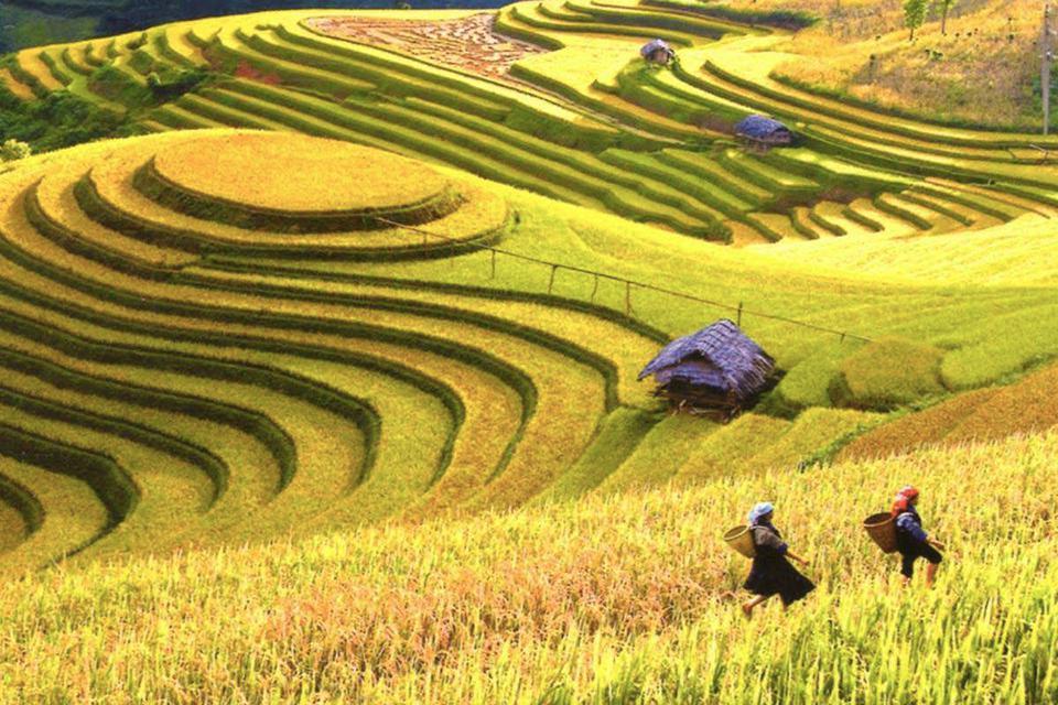 explore-ha-giang-sapa-7-days-4