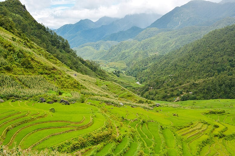 sapa-trekking-bac-ha-market-3d4n-2