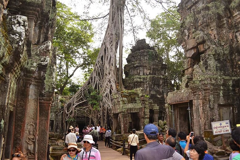 hightlights-of-vietnam-cambodia-12-days-ta-prohm-temple-cambodia-10