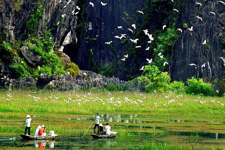 thung-nham-bird-garden-2