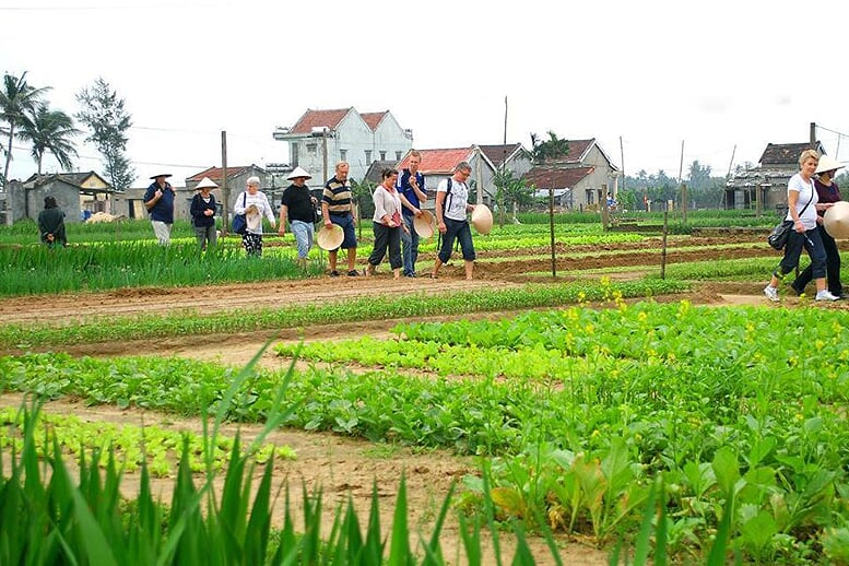 tra-que-vegetable-village-half-day-5
