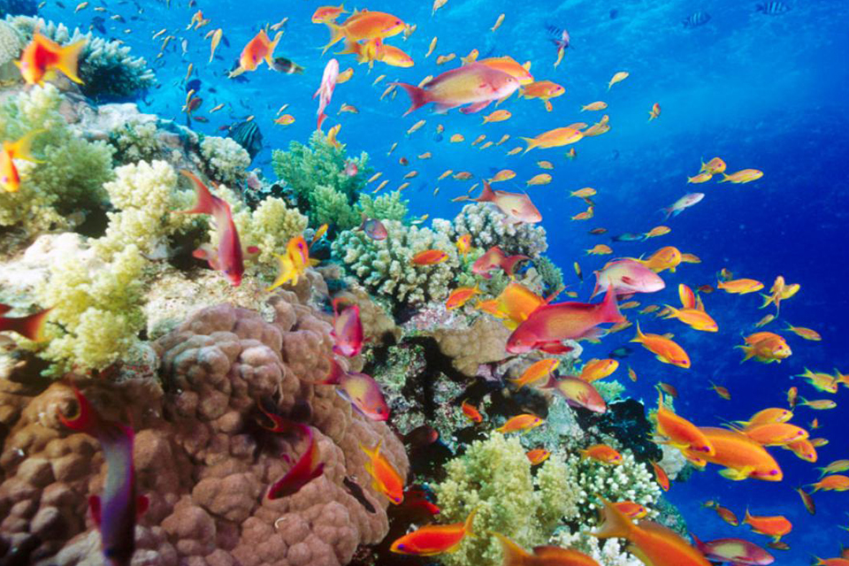 boat-trip-phu-quoc-snorkeling-and-fishing-tour-to-the-north-3
