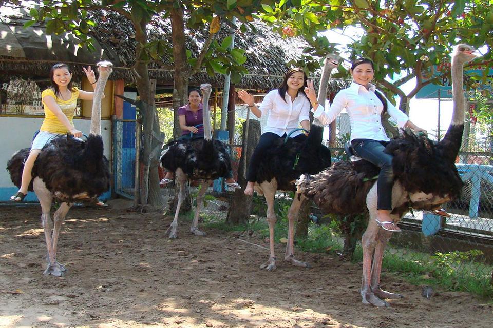 vinh-sang-farm-vinh-long-mekong-bailing-canal-2-days-2
