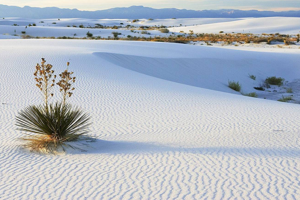 960-white-sandy-dunes