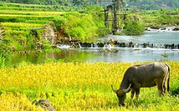 Pu Luong Retreat 3 days/ 2 nights
