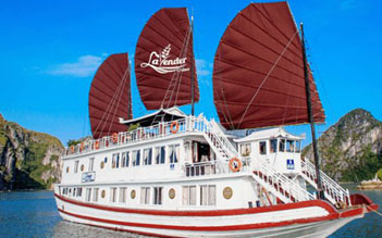 Lavender Cruise 3 days/2 nights