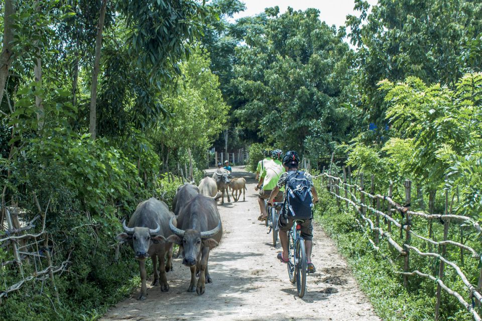 bong-lai-and-phong-nha-bicycle-full-day-1