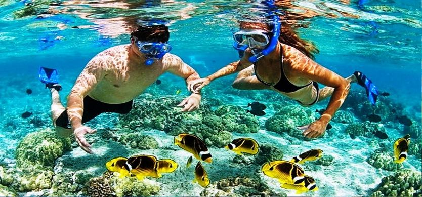 Fascinating diving experience in Phu Quoc