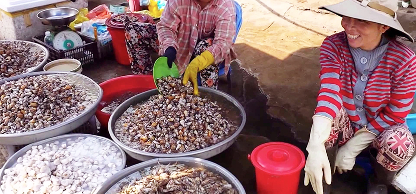 Explore the local markets in Phu Quoc