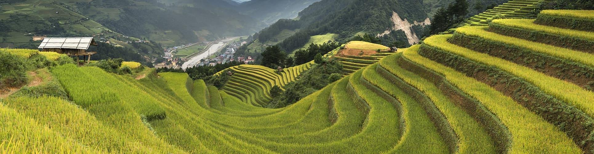 Vietnam Travel Mates