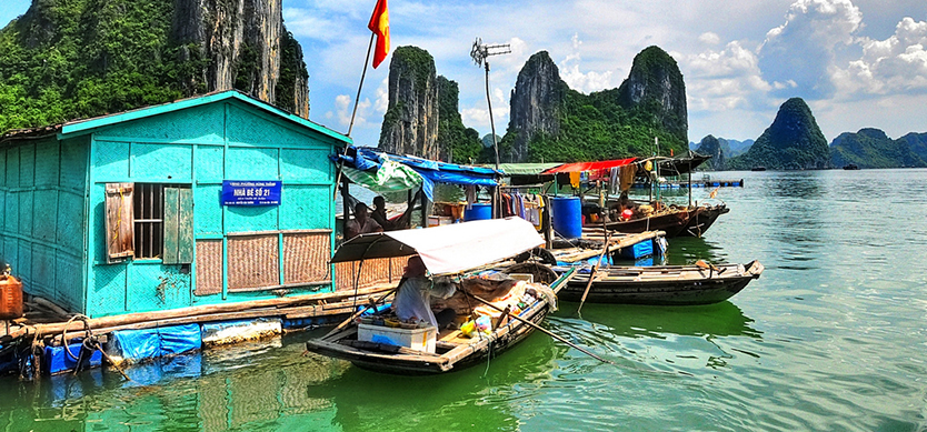 Top exciting activities you will enjoy on a one-day cruise tour in Halong Bay