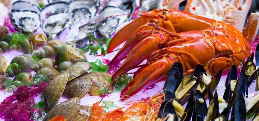 Where to enjoy seafood in Halong Bay