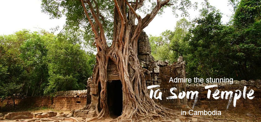 Admire the stunning Ta Som Temple in Cambodia