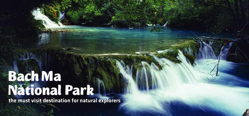Bach Ma National Park - the must-visit destination for natural explorers