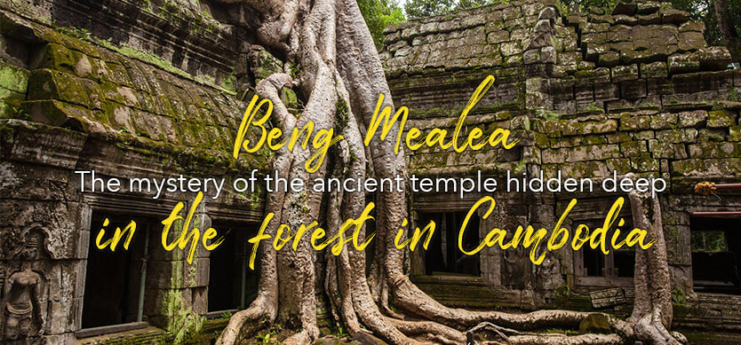 Beng Mealea – the mystery of the ancient temple hidden deep in the forest in Cambodia