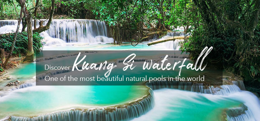Discover Kuang Si Waterfall - One of the most beautiful natural pools in the world