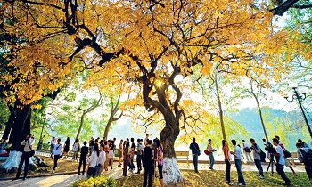 Discover the beauty of Northern Vietnam in autumn