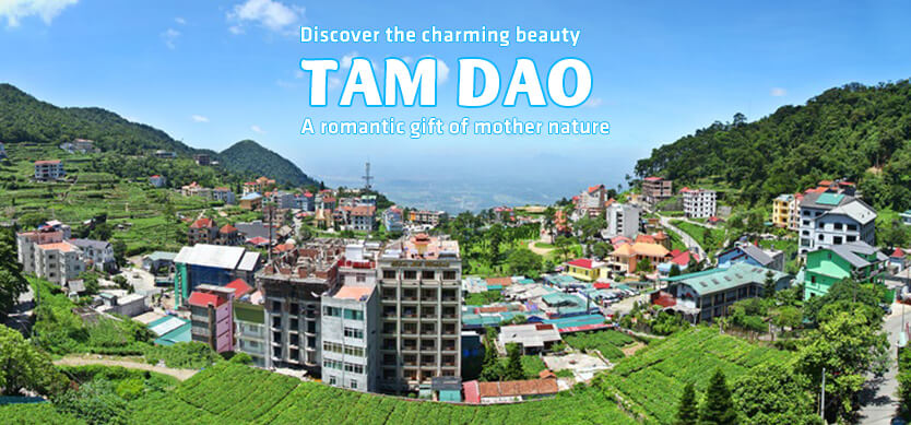 Discover the charming beauty of Tam Dao - A romantic gift of mother nature